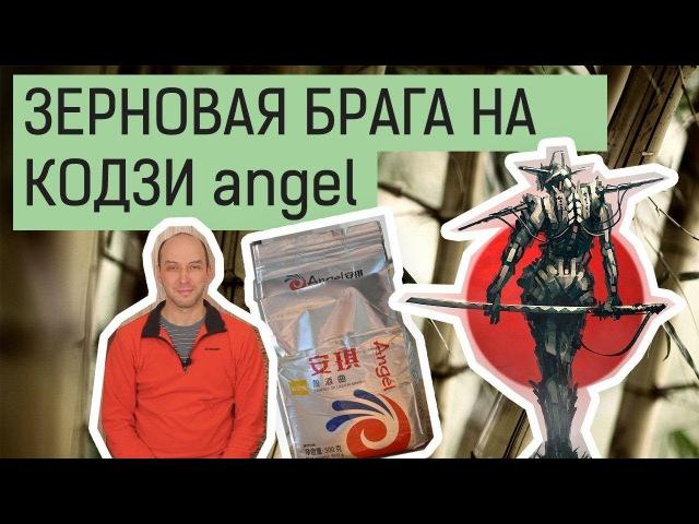 Кодзи Ангел (Angel). Ставим зерновую брагу