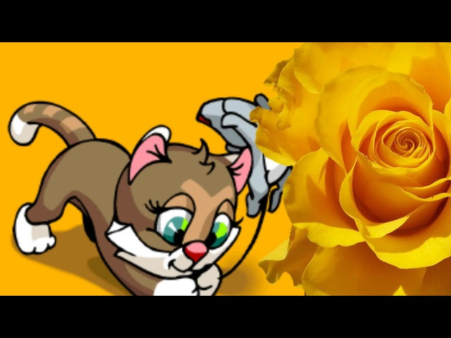 Кис кис мяу Веселые детские песенки Приколы с котами