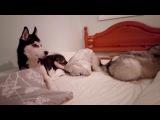 Xena and Lana just playing around