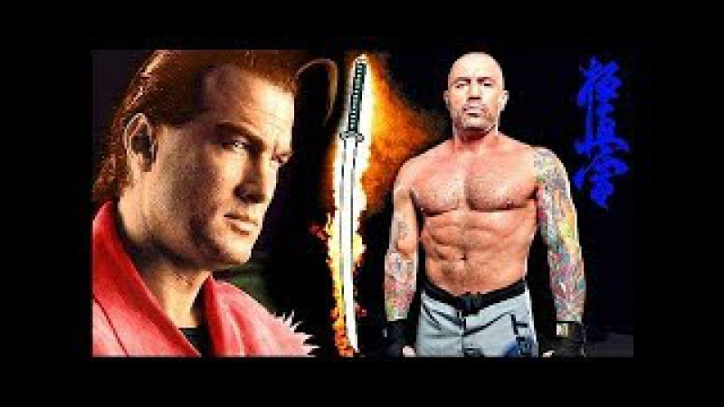 Joe Rogan Versus Steven Seagal! - Taekwondo VS Aikido Martial Arts. 2 Epic Fighting Styles Showdown