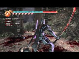 Ninja Gaiden 2 Master Ninja Chapter 11, no UT no Ninpo, BotA (part 1)