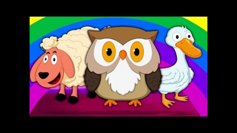 Tiere klingen Song | Tiere für Kinder | Sounds That Animals Make | Animal Sound Song