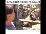 Когда жена тебя не понимает)))