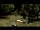 Невероятно красивое видео и великолепный Blaser F16.