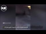 В Украине на свадьбе избили телеведущую  ответила за ганна