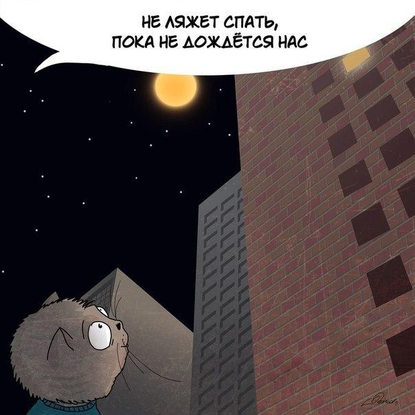 Фото №456253657 со страницы Алены Филипенко