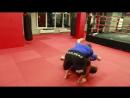 Боковая подсечка от Андрея Шидловского и Данилы Стрельцова — урок борьбы от мастеров дзюдо и самбо