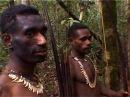 Жизнь аборигенов в джунглях Их обетование и существование