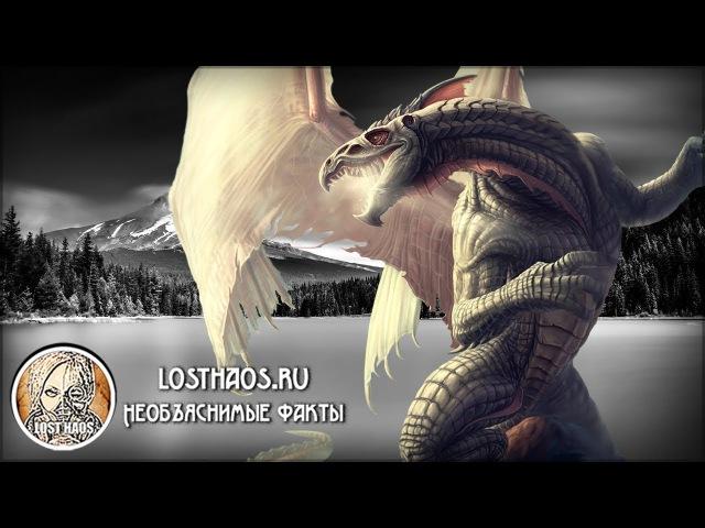 Легенды о драконах — реальность?.. Два загадочных видео
