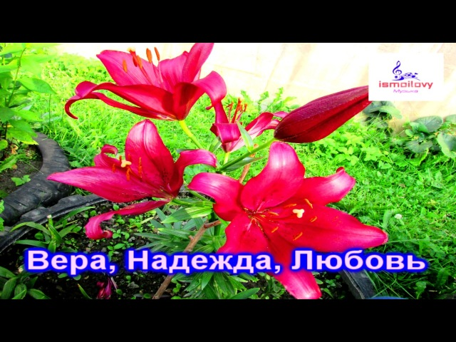 Исмоиловы Хасан и Хусен Вера, Надежда, Любовь