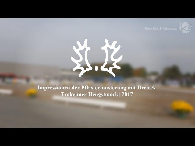 Impressionen der Pflastermusterung mit Dreieck Trakehner Hengstmarkt 2017