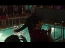 Il divo cruise, pool party at the masquarade