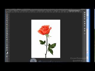 Урок 6. Разные виды фотостежка