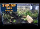 SETTING UP A SHRIMP TANK