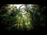 Wintersun - Forest Documentary FULL