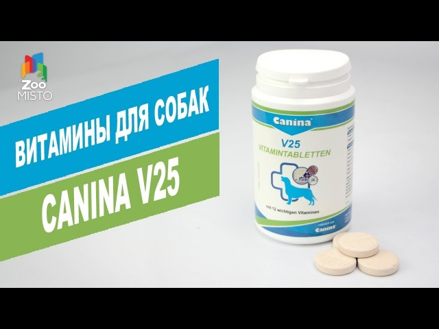 Витамины для собак Canina V25 | Обзор витаминов для собак Canina V25 | Vitamins for dogs Canina V25