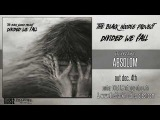 The Black Noodle Project - Absolom