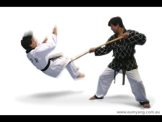 Hapkido Vs Taekwondo 2018   ( Martial Arts )
