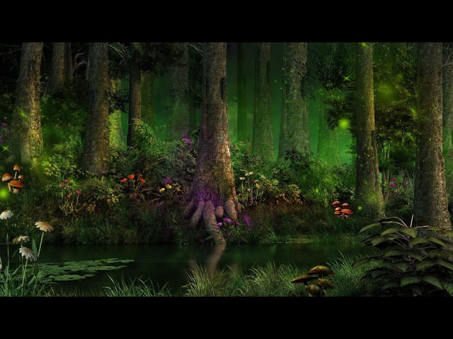 1 Hour of Forest Music Fantasy Music