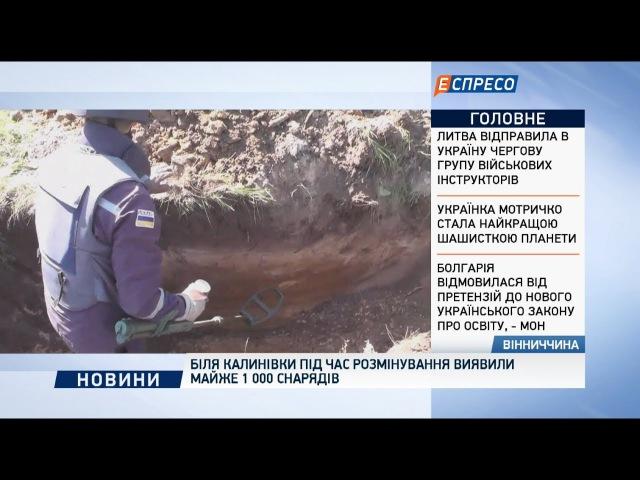 Біля Калинівки під час розмінування виявили майже 1 000 снарядів