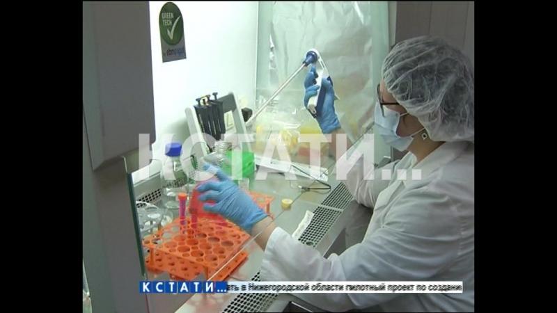 Образцы биоматериалов будут собирать и исследовать в Нижнем Новгороде