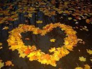Осень,для тебя сердечко из листьев
