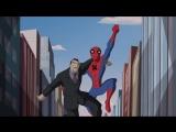Грандиозный Человек-паук 1 сезон 1 серия (2008 – 2009) 720p