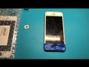 IPhone 5 - замена дисплея кнопки hone
