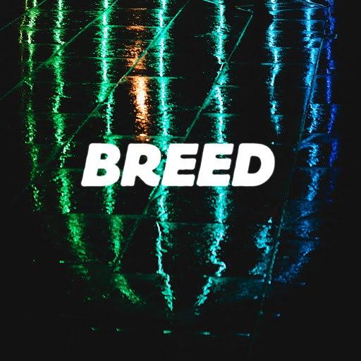 Bad America альбом Breed