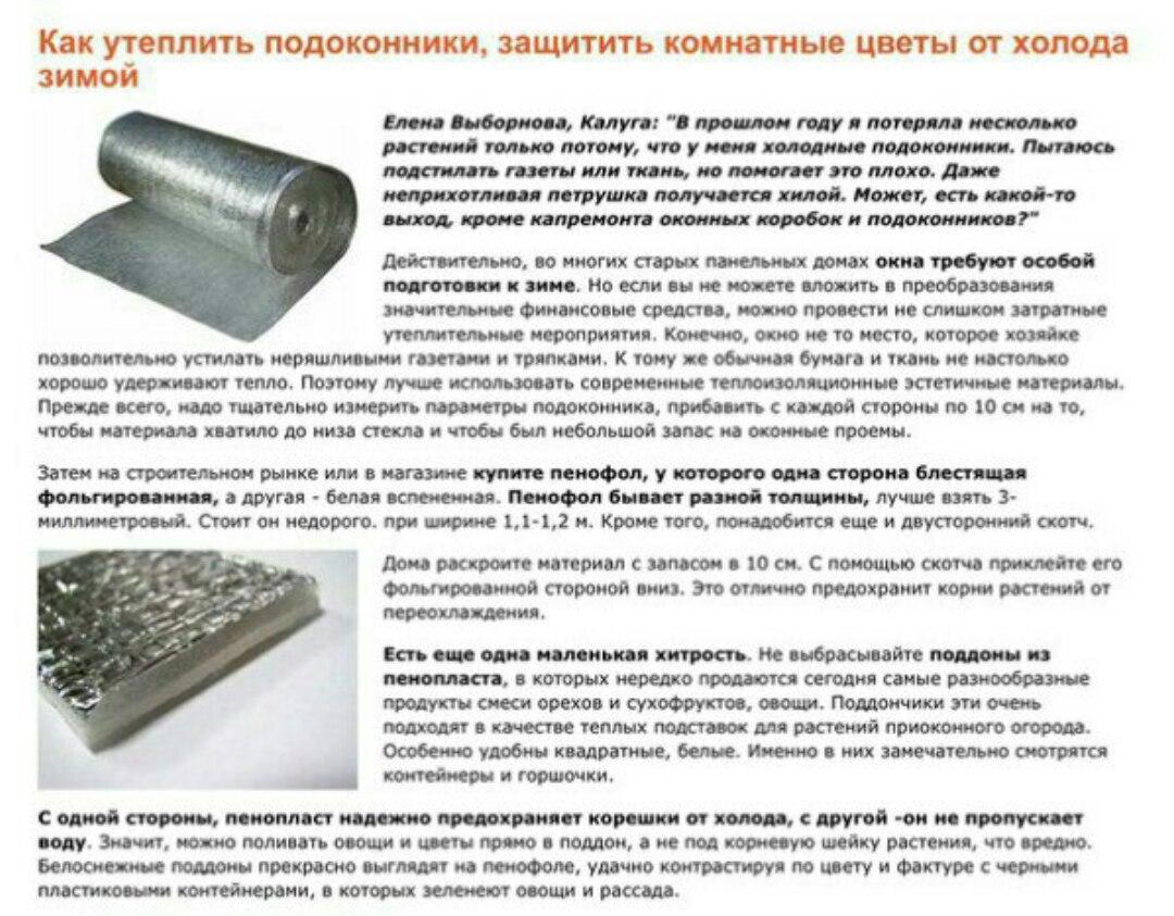 статьи о растениях из  газет и журналов - Страница 7 Szk0LVPTLKY