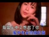 Мэн Тинвей (孟庭韦) – Ветер гонит тучу с дождём (风中有朵雨做的云)