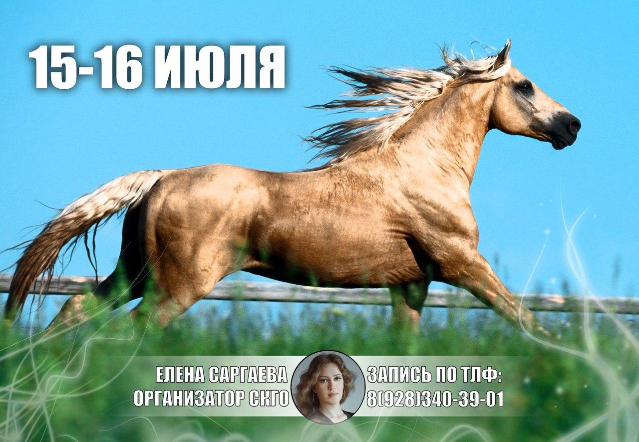 Афиша Пятигорск Конные выходные