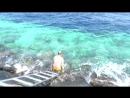 Купание в открытом море г. Малле, близ Villingili Ferry Termilal, масса удовольствия, июнь 2017 Мальдивы