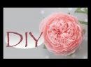 Большая пионовидная роза из бумаги DIY Tsvoric