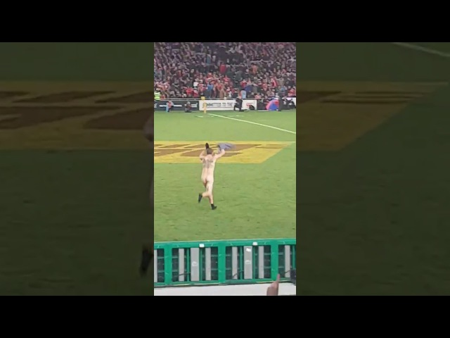Lions vs All Blacks, finest moments. STREAKER!!