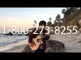 (Logic) 1-800-273-8255 ft. Alessia Cara, Khalid - [Free Tabs] Fingerstyle Guitar Cover