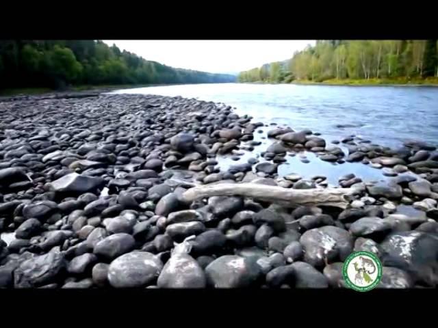 Алтайский Заповедник - Всемирное природное наследие