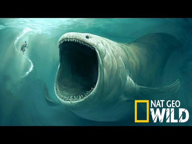 National Geographic - Доисторические чудовища глубин океана - Документальный фильм