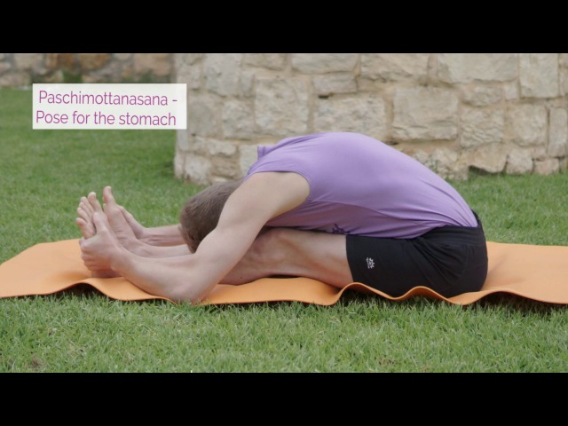 Paschimottanasana Video lessons of Openyoga
