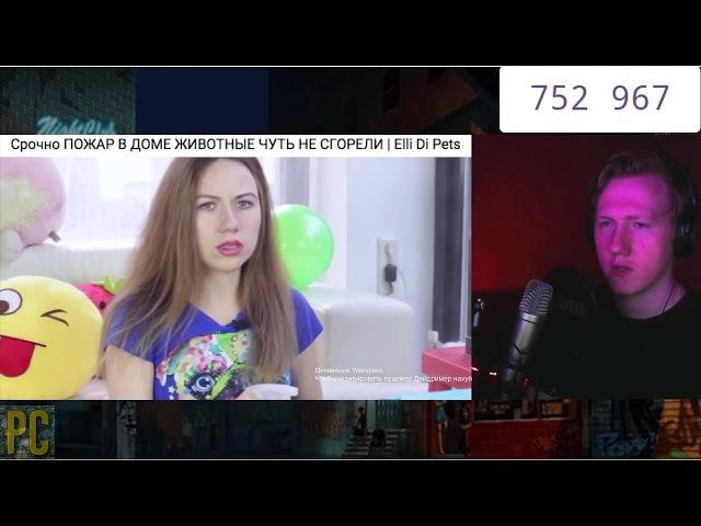 Даня Кашин смотрит CMH - СУМАСШЕДШАЯ ЖИВОДЕРКА - ЭЛЛИ ДИ