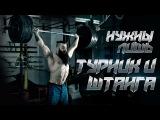 Упражнения на турнике и со штангой - идеальный комплекс Бородача eghfytybz yf nehybrt b cj infyujq - bltfkmysq rjvgktrc ,jhjlfx