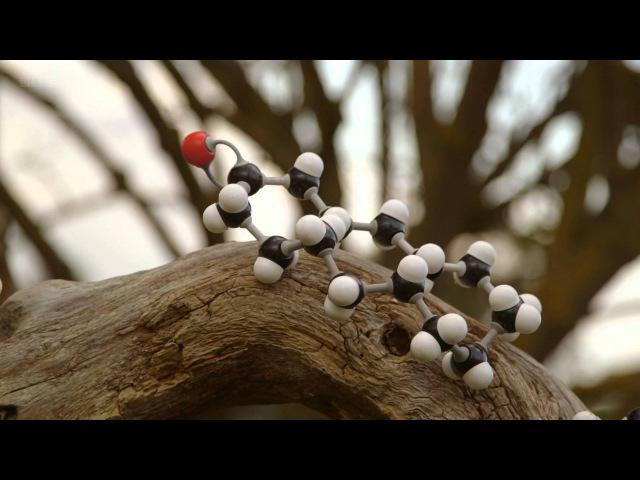 Тайны квантовой физики. Да будет Жизнь. 2/2 nfqys rdfynjdjq abpbrb. lf ,eltn ;bpym. 2/2