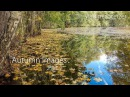 Autumn Images (Part 2) Beautiful video with relaxing piano music for the soul. Vladimir Sterzer