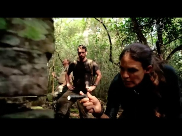 В поисках сокровищ змеиный остров 2 сезон 4 серия Discovery смотреть онлайн без регистрации