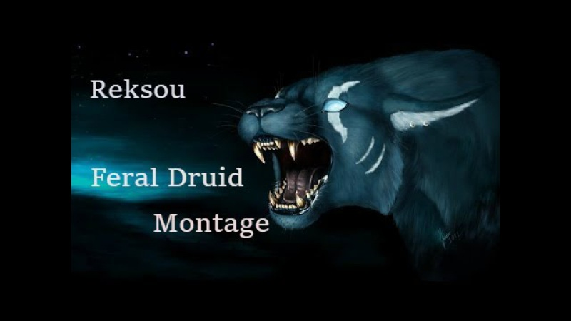 World of Warcraft Legion: Feral druid pvp montage(Zed with style)