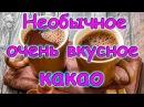 Семья Бровченко Очень вкусное и необычное какао Рецепт от папы 06 17г