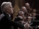 Herbert von Karajan, Wiener Philharmoniker Dvo