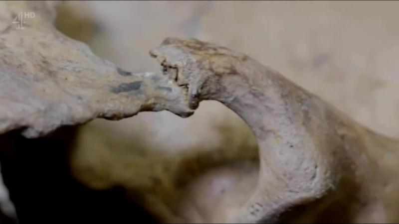 Тайны римских черепов (2016)