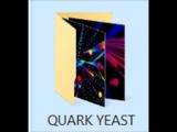 Quark Yeast - MIXST018