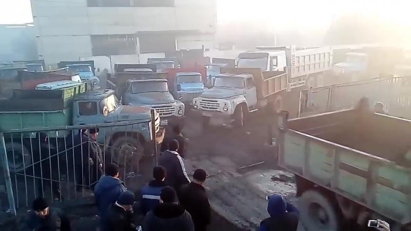 Туркестан комирге талас.mp4